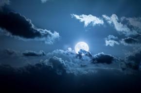 В лунната загадъчност лунички тънкокрили присвяткват в кехлибарени очи ухание на тайна