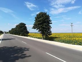 Снимка: Завърши рехабилитацията на 15,5 км от път II-29 Варна – Добрич